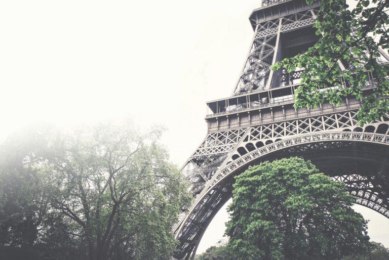 In Parijs barst het binnenkort van de urban gardens